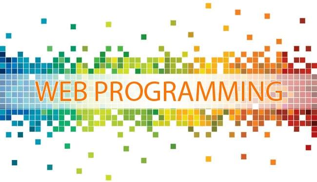 Веб-программирование. Что это такое и с чем его едят?